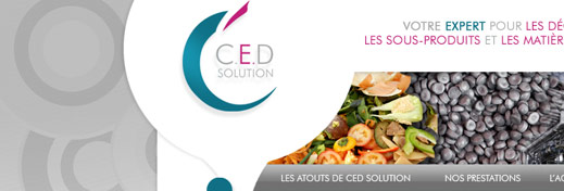 CED Solution